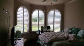 Arched Shutters 13