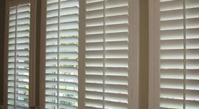 Painted Shutters 19